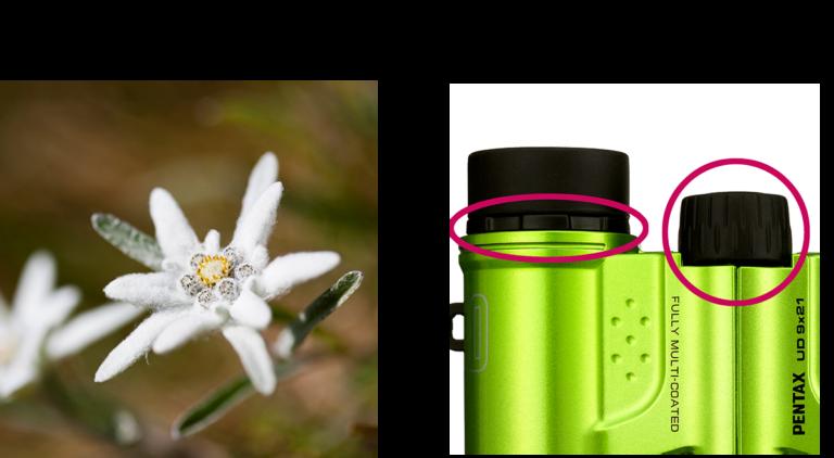 Pentax 9x21 UD Binocular (Gray/Orange)_features_1